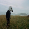 play music Sparklehorse